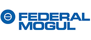 FEDERAL MOGUL FRICTION PRODUCTS, S.A.